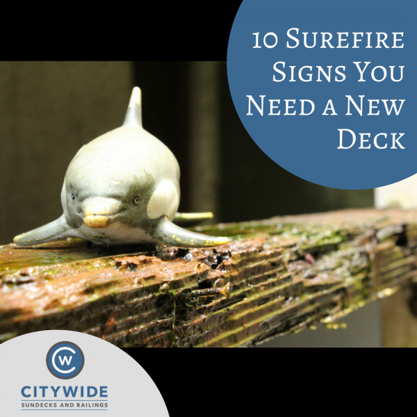 signs you need a new deck blog | Citywide Sundecks and Railings