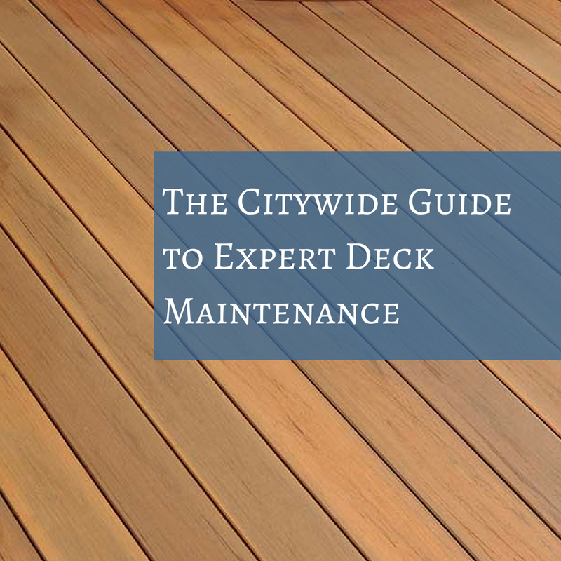 Guide to expert deck maintenance blog | Citywide Sundecks and Railings