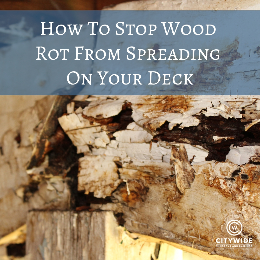 How To Stop Wood Rot From Spreading On Your Deck | Citywide Sundecks and Railings