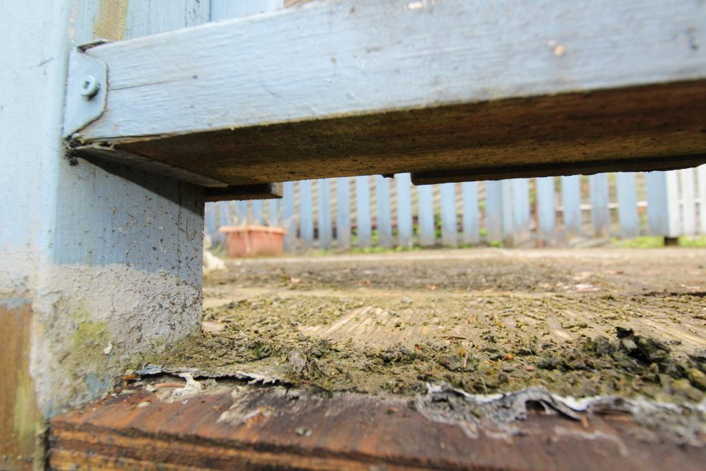 Wet wood rot - How to stop rot from spreading | Citywide Sundecks and Railings