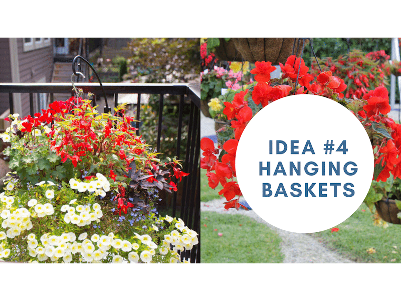 create privacy on your sundeck with hanging baskets | Citywide Sundecks and Railings