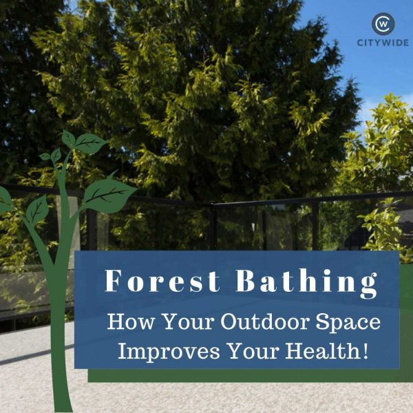 Forest Bathing On Sundeck To Improve Health